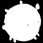 logo-slider-b